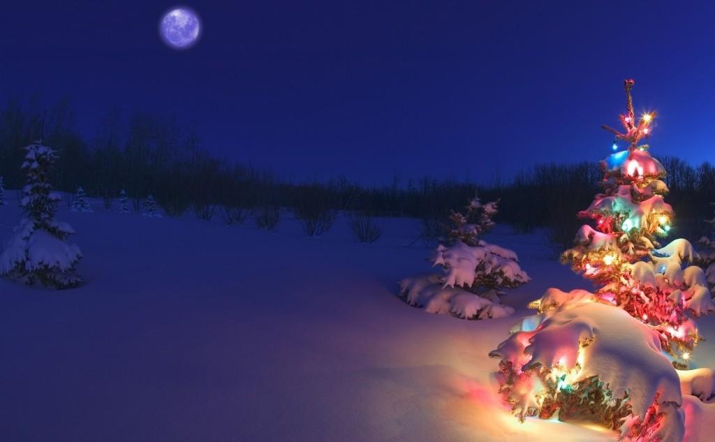 lampki-zima-choinka