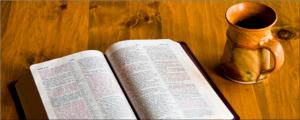 szk-bibl