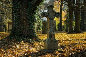 autumn-2182010
